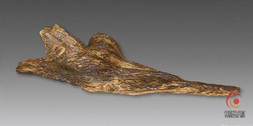 香木又称沉香木.是一种带有奇异香味的树